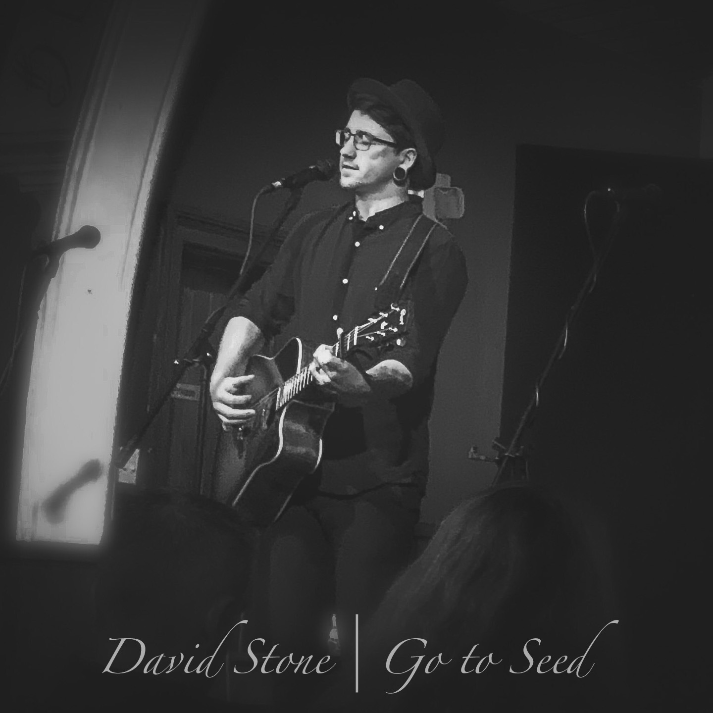 David Stone - Go to Seed